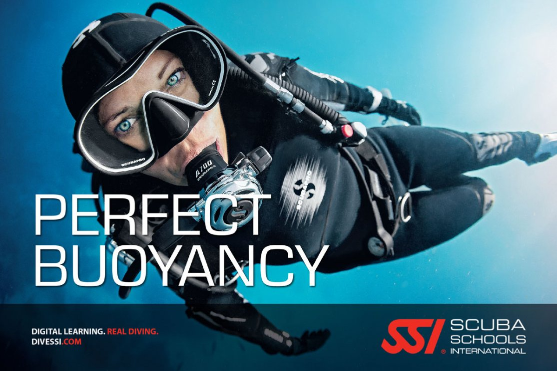 Manual ssi pdf open water diver