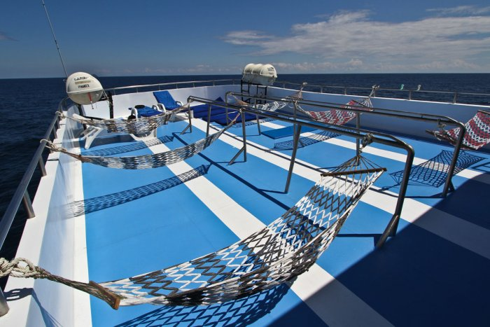 pictures_mq3sundeck.jpg